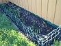 Vinkel Här har en massa nysatta Irisar börjat visa sig. 2008-12-21 030