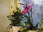 IMG_0032  2008-12-29 IMG_0032