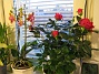 IMG_0033  2008-12-29 IMG_0033