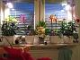 Blommor från ICA Lite knepigt ljus men fint blev det. 2008-12-29 IMG_0078