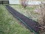 Nu är alla fröer satta på Bakgården och det som syns redan är mina Solrosor. (2009-04-11 101)