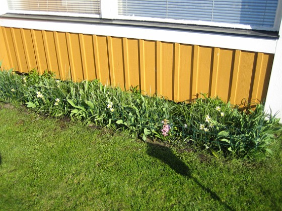 2009-04-25 045 Granudden Färjestaden Öland
