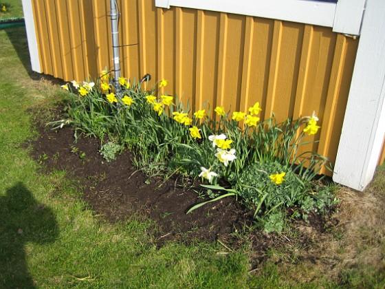 2009-04-26 017 Granudden Färjestaden Öland