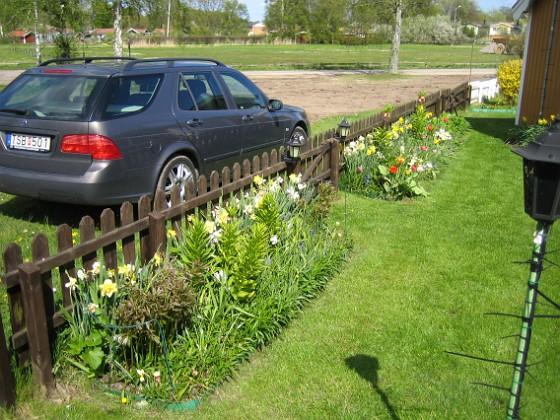 Granudden Staketet sett inifrån. 2009-05-09 004 Granudden Färjestaden Öland
