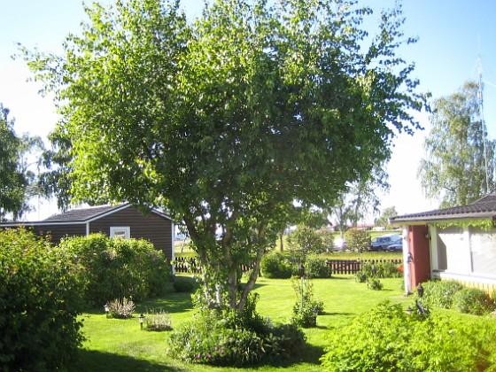 2009-05-31 044 Granudden Färjestaden Öland