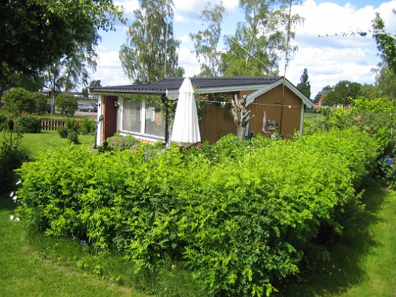 Häcken &nbsp 2009-06-14 065 Granudden Färjestaden Öland