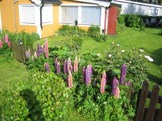 Granudden &nbsp 2009-06-18 004 Granudden Färjestaden Öland