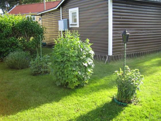 Granudden &nbsp 2009-06-18 046 Granudden Färjestaden Öland