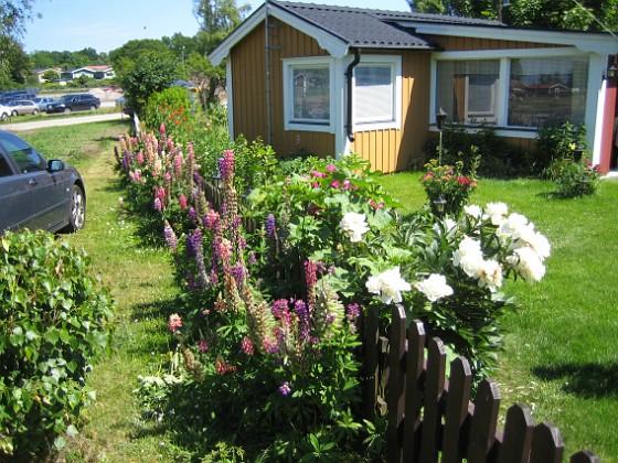 Granudden &nbsp 2009-06-28 003 Granudden Färjestaden Öland
