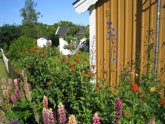 2009-06-28 121 Granudden Färjestaden Öland