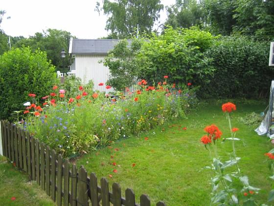 Bakgården  2009-07-08 IMG_0172 Granudden Färjestaden Öland
