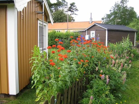 En vy utifrån  2009-07-08 IMG_0173 Granudden Färjestaden Öland