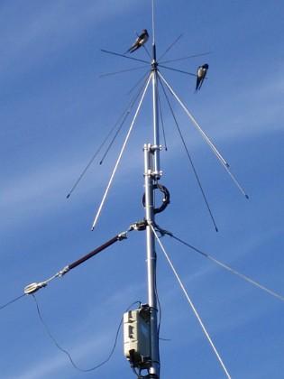 Norra antennmasten Här finns avstämningsenheten till min longwire-antenn, samt min discone för VHF/UHF. Observera två Svalor som vilar på antennen. 2009-07-17 IMG_0180 Granudden Färjestaden Öland