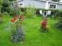 IMG_0132  2009-07-23 IMG_0132