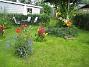 IMG_0227  2009-07-23 IMG_0227