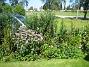 Temynta  2009-08-07 IMG_0038