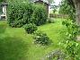 Hortensia  2009-09-05 IMG_0082