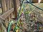 Staketet  2010-04-02 004