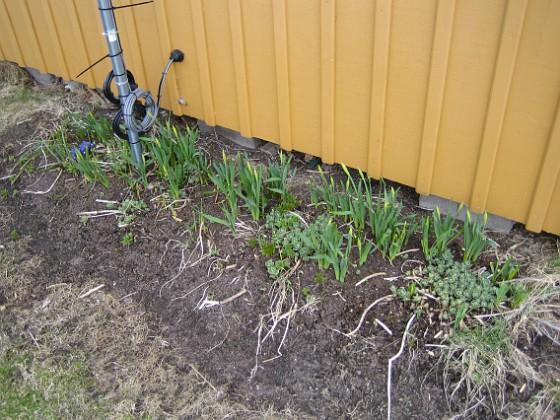 2010-04-17 039 Granudden Färjestaden Öland