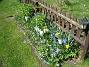 Granudden  2010-05-02 004