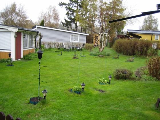 Granudden Gräset är grönt iaf. Mossan är numera stendöd.&nbsp 2010-05-08 005 Granudden Färjestaden Öland