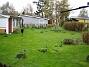 Gräset är grönt iaf. Mossan är numera stendöd. (2010-05-08 005)