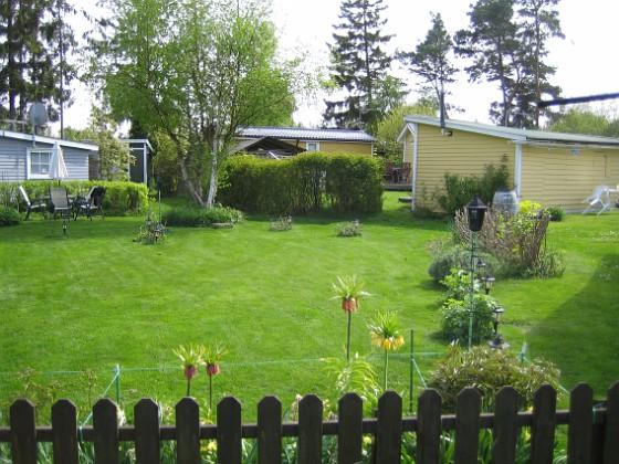 Granudden Jag hann faktiskt med att klippa gräset. Det var välbehövligt. 2010-05-23 002 Granudden Färjestaden Öland