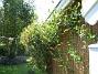 IMG_0002  2010-07-03 IMG_0002