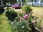 IMG_0028  2010-07-03 IMG_0028