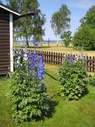 2010-07-09 IMG_0013 Granudden Färjestaden Öland