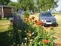 IMG_0016  2010-07-12 IMG_0016