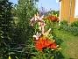 IMG_0016  2010-07-13 IMG_0016