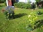 IMG_0025  2010-07-19 IMG_0025