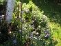 IMG_0027  2010-09-12 IMG_0027