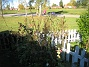 Granudden  2010-10-16 IMG_0040