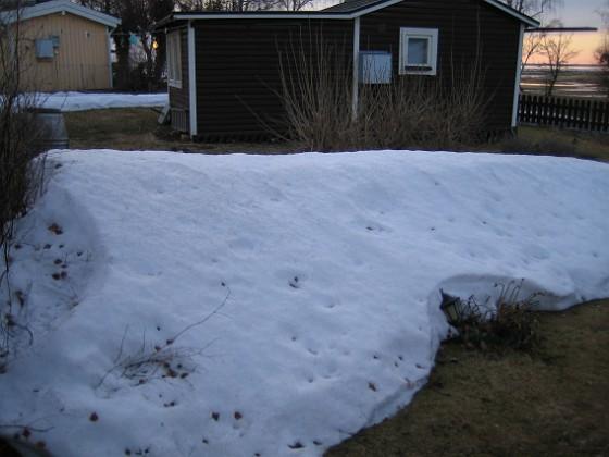 Snövall  2011-03-25 041 Granudden Färjestaden Öland