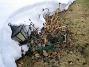 Lamporna tar stryk varje vinter. Borde egentligen ta in dem. (2011-03-25 012)