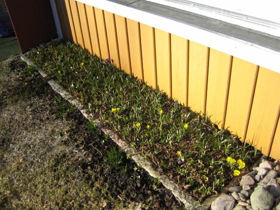 Altanen &nbsp 2011-03-26 IMG_0045 Granudden Färjestaden Öland