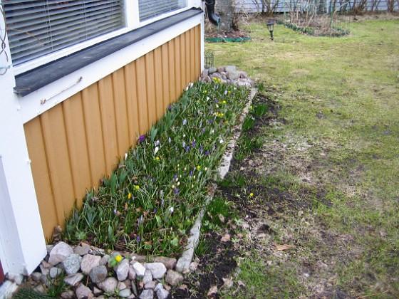 2011-04-02 049 Granudden Färjestaden Öland