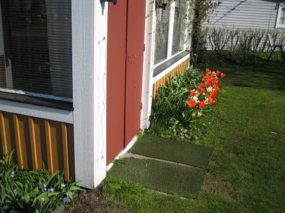 2011-04-24 050 Granudden Färjestaden Öland