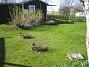 Granudden  2011-04-24 088