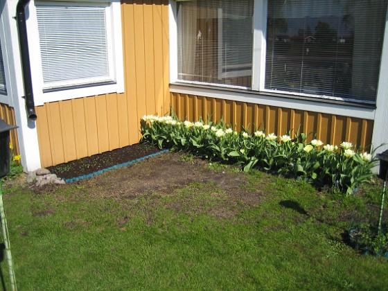 Granudden &nbsp 2011-05-07 IMG_0151 Granudden Färjestaden Öland