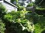 IMG_0020  2011-05-29 IMG_0020