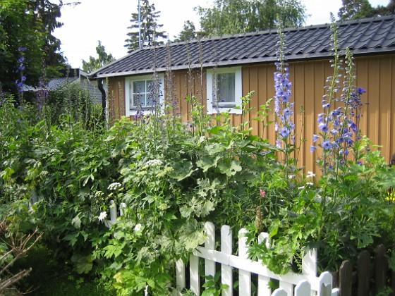 2011-06-20 IMG_0019 Granudden Färjestaden Öland