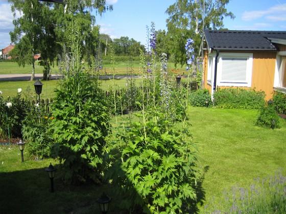 2011-06-24 IMG_0024 Granudden Färjestaden Öland