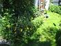 IMG_0002  2011-06-27 IMG_0002