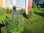 Granudden  2011-07-05 IMG_0015