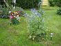 IMG_0022  2011-07-07 IMG_0022