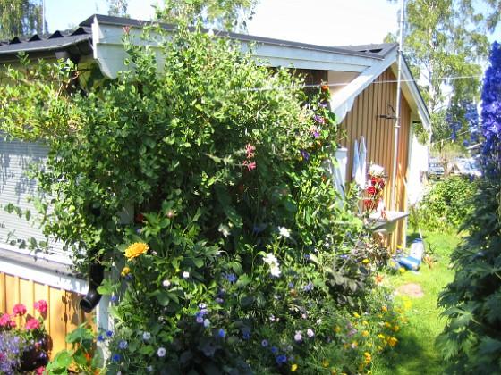 Granudden &nbsp 2011-07-09 IMG_0037 Granudden Färjestaden Öland
