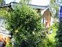 Granudden  2011-07-09 IMG_0037